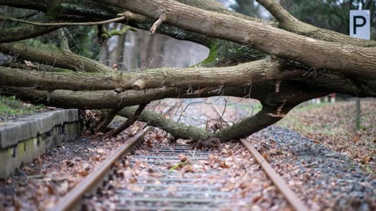 Deutsche Bahn stellt sich auf mehr Extremwetter ein
