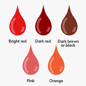 Learn the different blood colour in menses mean