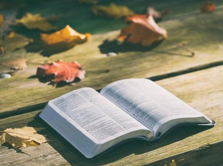 5 Scriptures that Changed My Financial Life