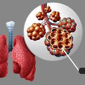 Check Out 3 Foods You Should Consume Regularly To Keep Your Lungs Healthy
