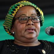 Another ANC top minister tells lies about GUPTAS and Duduzane Zuma's R51bn tender -OPINION