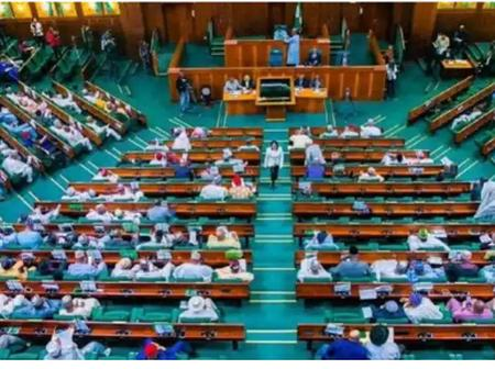 Check Out The 3 Committees Set Up By The House of Reps To Ensure Doctors' Strike Is Called Off Soon