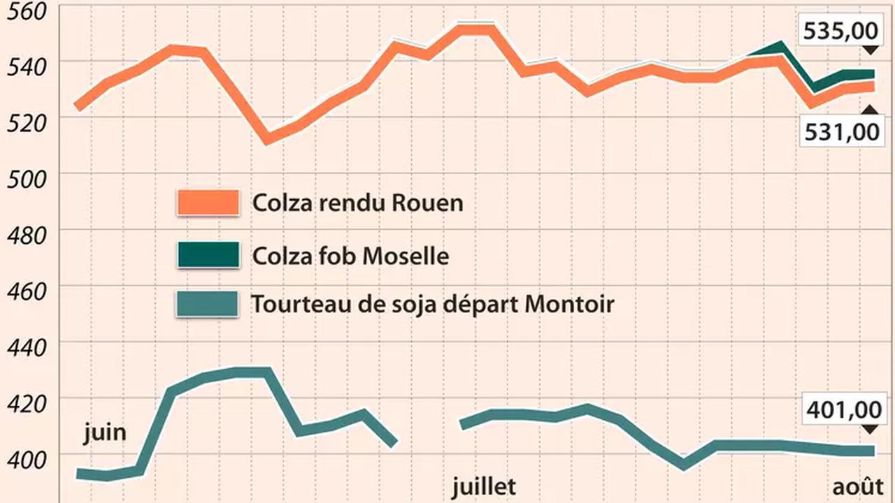 Prix des Oléagineux le 3 août : stabilisation des cours du colza, baisse du soja et du canola outre-Atlantique
