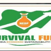 Beneficiaries Received Monthly Payment From The Survival Fund.
