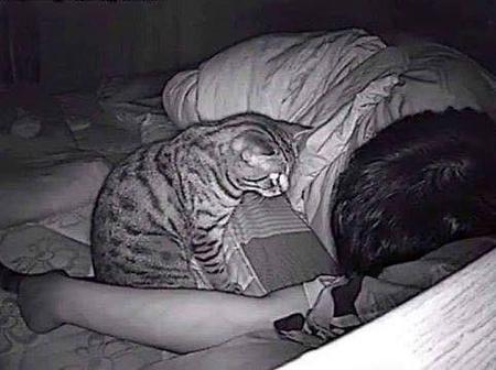 He Couldn't Breath Each Time He Slept, So He Planted A Camera In His Room And Found This