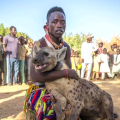 Meet the 'Hyena Men' of Nigeria who live with the animal and use them for business (photos)