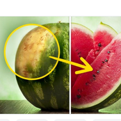 When You See This in A Watermelon Do Not Ignore It Is The Best For You To Eat.