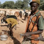 Next time you see Fulani herdsmen,
