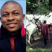 Nigerian farmer reveals what he did to the cows that invaded his farm and destroyed his plants