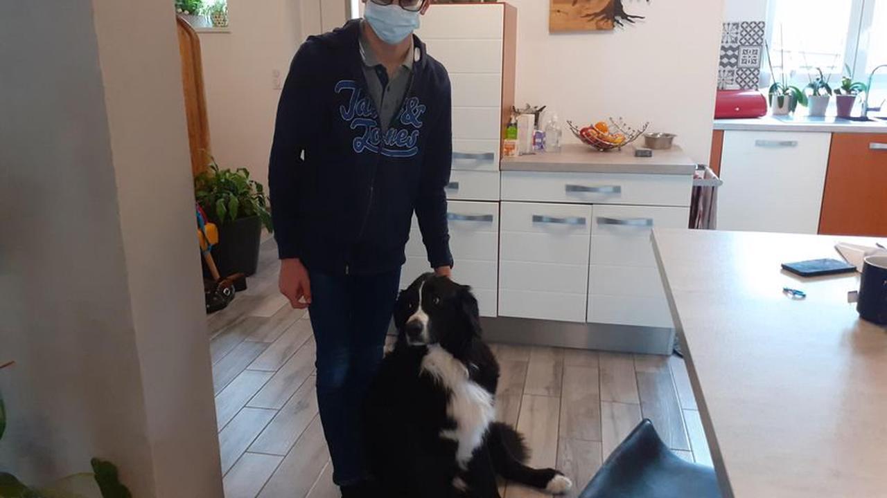Handicap. À Wittenheim, Bastien découvre son chien-guide Otop