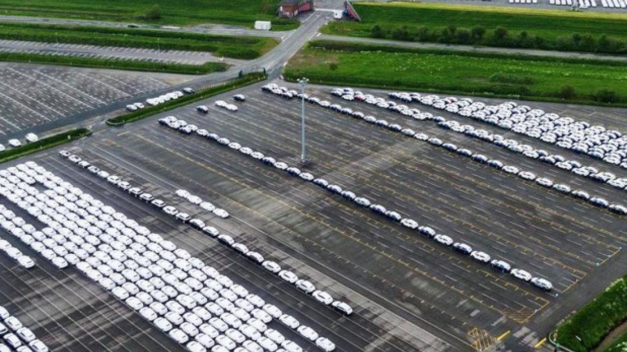 Umweltschutz-Aktion: Greenpeace Eberswalde beklebt Verbrenner-Autos mit Protest-Botschaften