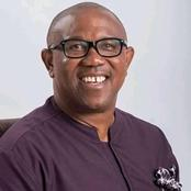 Opinion:  Top 3 Potential Candidates For Igbo Presidency