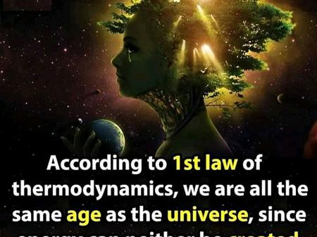 Make your day with these incredible science facts.