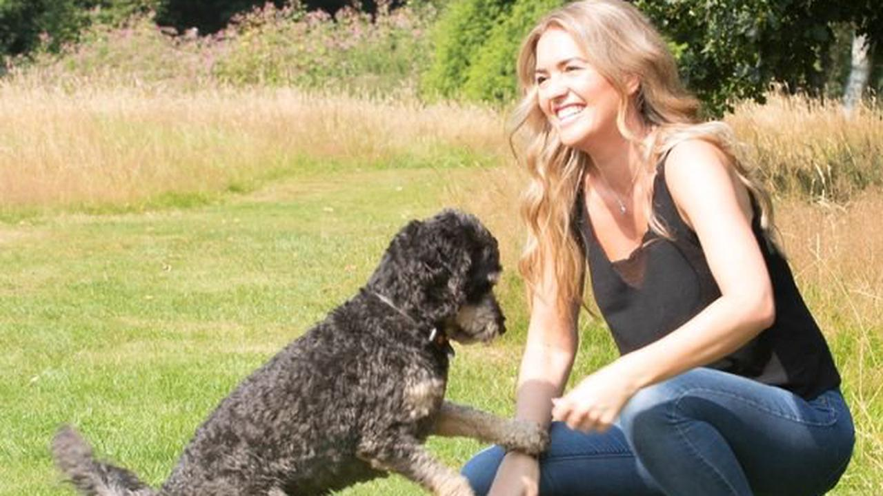 Here's how you can own a share in the dog owner app K9 Nation