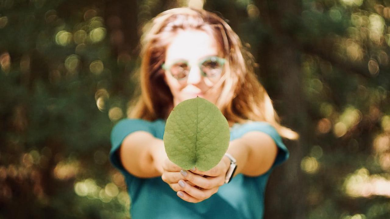 5 small ways you can do your bit for the environment