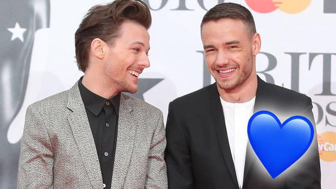 Liam Payne and Louis Tomlinson's cutest friendship moments