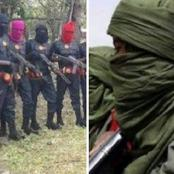 OPINION: Nigerian Army Should Do This Against  Bandits After ESN Has been Defeated