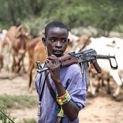 Opinion: 2 Things Every Nigerian Staying In The South Should Do When They Met Fulani Herdsmen