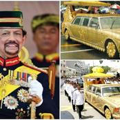 Meet The Man who Owns The Only Golden Plane In The World And 7000 Cars; See His Net Worth (Photos)