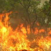 Saison de l'harmattan: la SODEXAM alerte la population sur les risques de feux de brousse