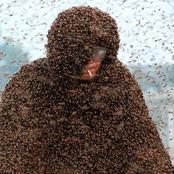 Des milliers d'abeilles sur le corps d'un apiculteur chinois , Gao Bingguo. Record Guinness 2015 .