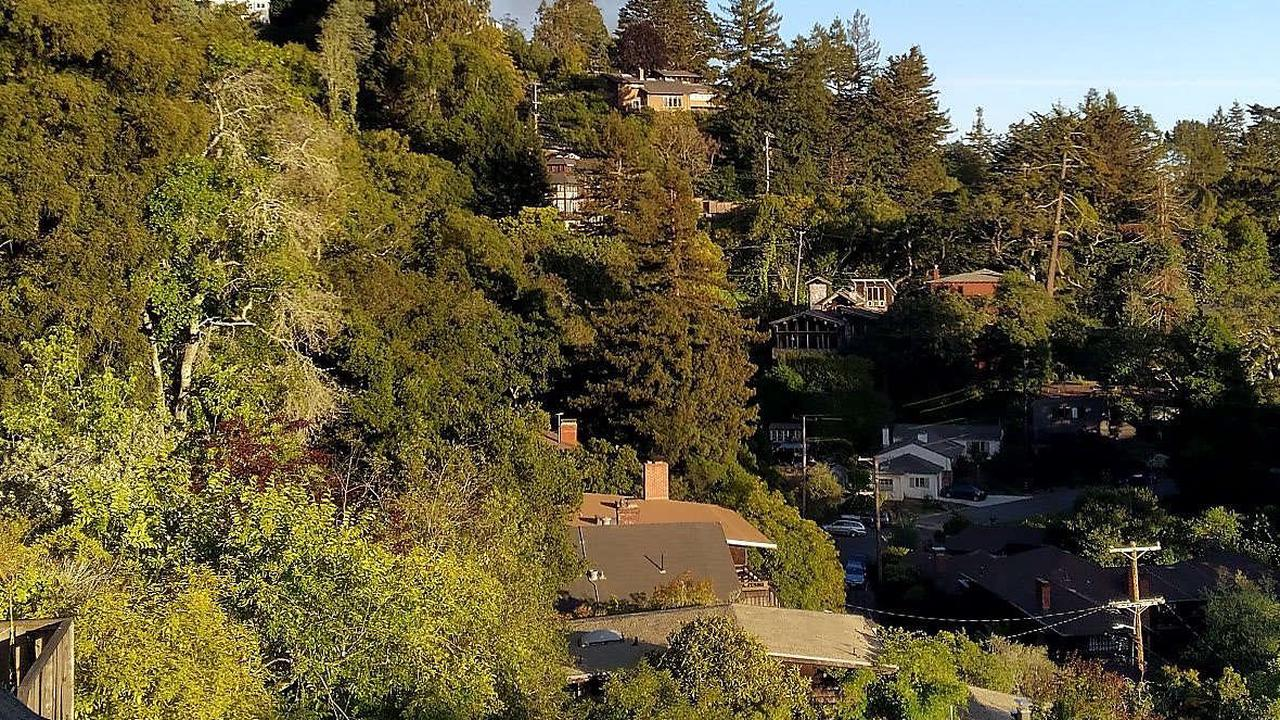 12-year-old girl charged with setting quartet of fires in Berkeley hills