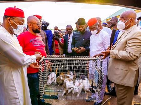 This Is Absurd & Shameful! - See Reactions As Imo State Governor Empowers Youths With Rabbits & Cage