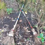 Decorated Brooms Found on the Forest