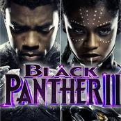 Black Panther: Will There Be A Part 2 Without Chadwick Boseman?