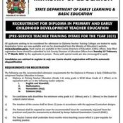 Reasons Why The First Lot Of Diploma Teachers to Be Trained Will Be Lucky In Terms Of Employment
