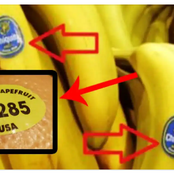 See The Meaning Of The Label Attached On Some Fruits Products.