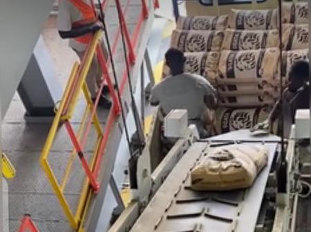 Ibrahim Mahama Causes Stir After work Begins At Dzata Cement Factory (Video)