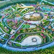 The Miracle Garden That Has Won Guinness World Record Three Times And Where It Is Located (Photos)