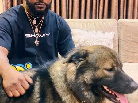 Mr Macaroni, Broda Shaggi & Others react as Falz Shares cool photo of himself and his Dog