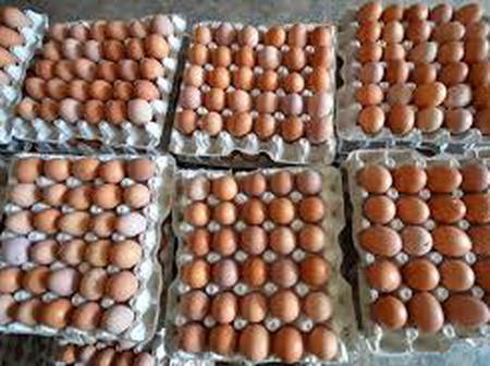 Egg price is likely to increased in Dormaa Ahenkro