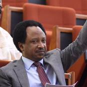 Senator Shehu Reveals Why Political Appointees Don't Always Honour Legislative Summons In Nigeria
