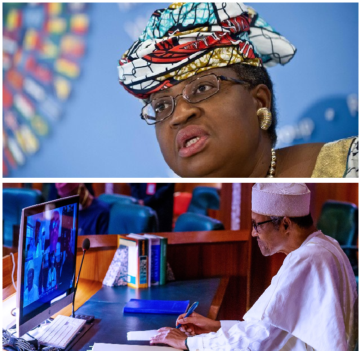 - 0d8c34e7712de355c8352fbc0316ad34 quality uhq resize 720 - Iweala, Buhari Break Silence After USA Rejects Former Minister as WTO Director-General  - 0d8c34e7712de355c8352fbc0316ad34 quality uhq resize 720 - Iweala, Buhari Break Silence After USA Rejects Former Minister as WTO Director-General