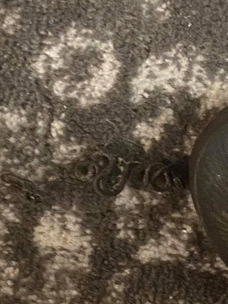 Woman finds family of 18 snakes living under her bed (Photos)