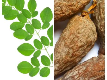 Soak Moringa Leaf and Alligator Pepper in Dry Gin for 7 Days to Treat these Health Problems!