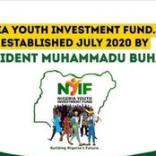 Nigerian Youth Investment Fund Set To Give Between 250k And 50M To Nigerian Youth - How To Apply
