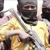 Boko Haram Reportedly Recruiting And Training Young Children With Weapons (Photos)