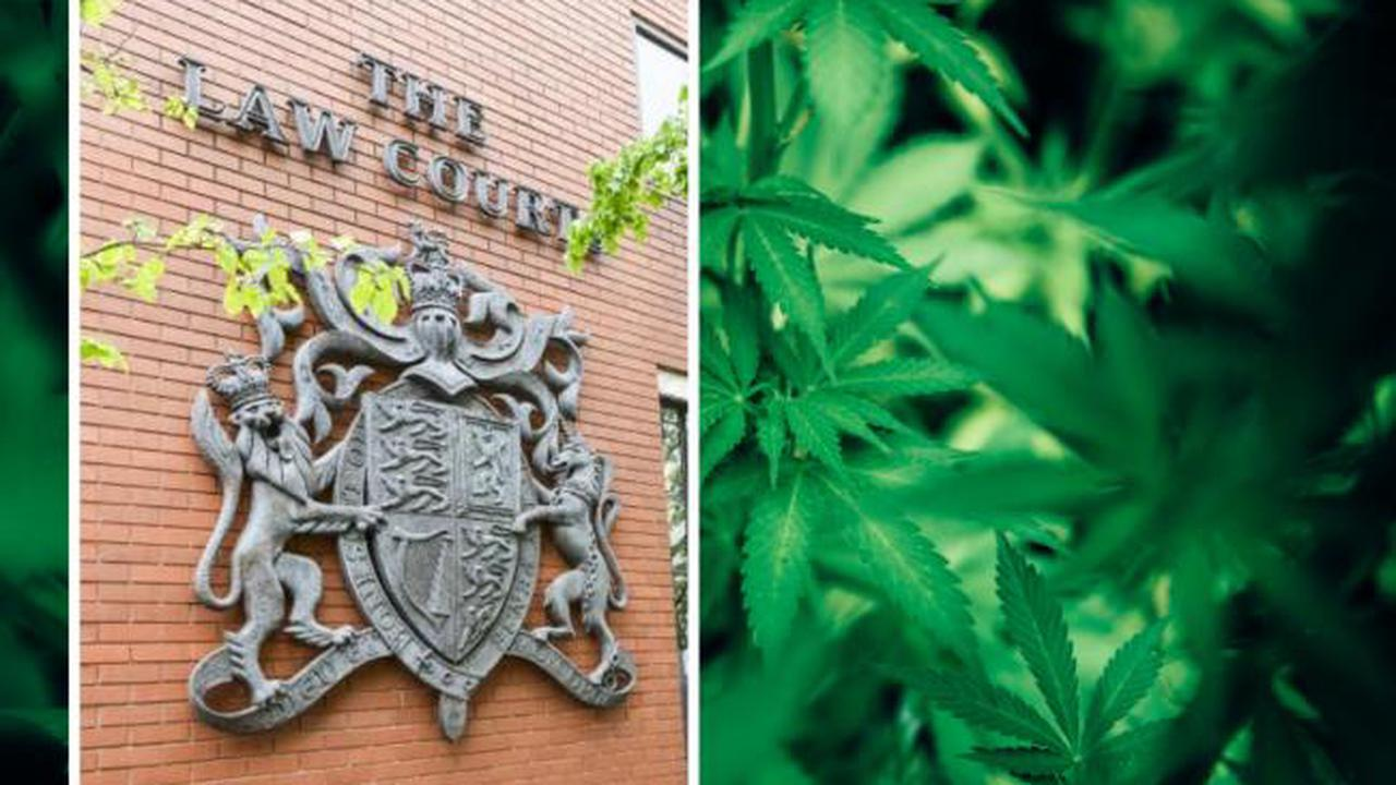 Cannabis dealer, 20, claimed £1,300 stash was for personal use