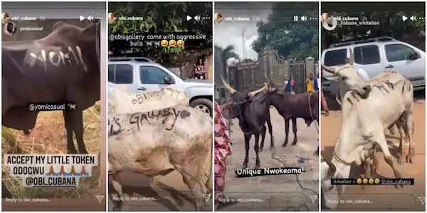 Obi Cubana received about 96 cows for his mother's burial.