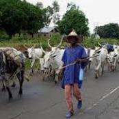 Fulani People Are Not Terrorists -Sultan of Sokoto