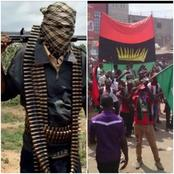 'FG Treats IPOB Worse Than They Do With Criminal Bandits From The North' - Dipo Awojide