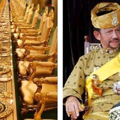The Man Who Owns The Only Golden Plane In The World And Has Over 7000 Cars