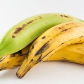 Plantain is a healthy source of food but may cause these health issues if consumed excessively.