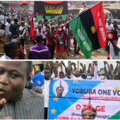 IPOB and OPC Are Like Boko Haram - Dambazau Reveals