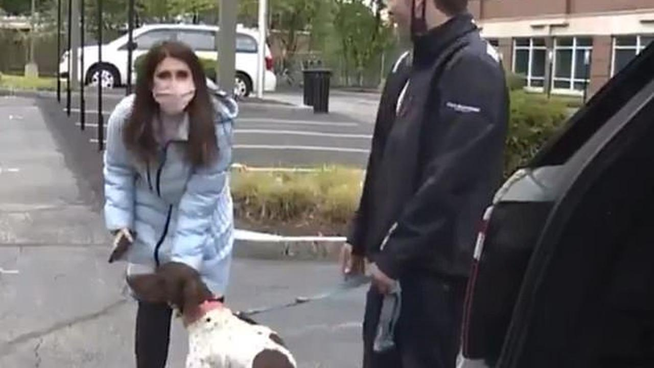 Barking news! Boston journalist who was reporting on local dognapping spots saves the day after spotting the thief while filming the scene and rescuing the pooch