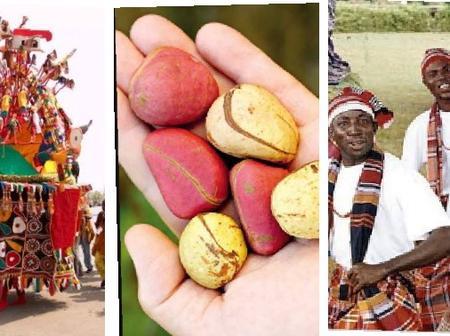 Check Out Why The Igbos 'Worship' Kolanuts